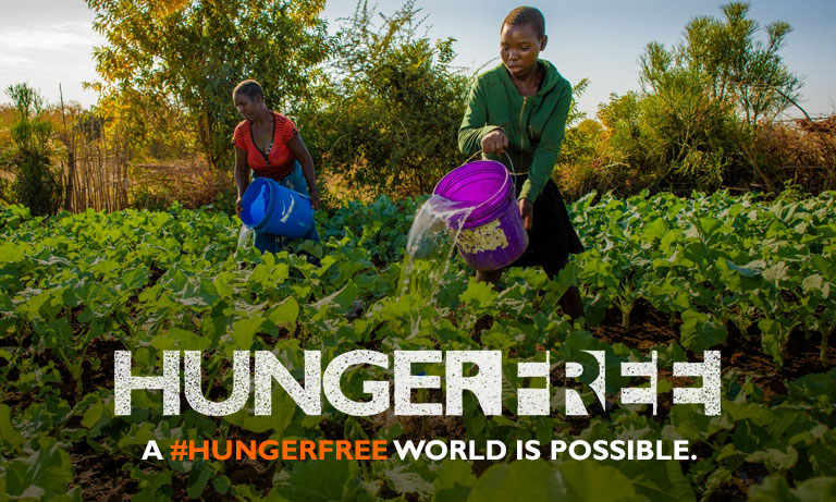 HungerFree - Image 2