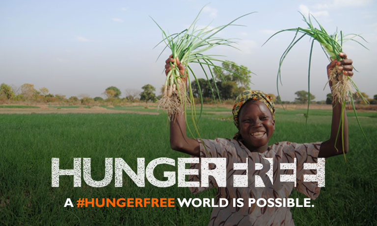 HungerFree - Image 3