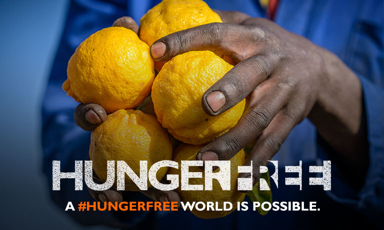 HungerFree - Image 4